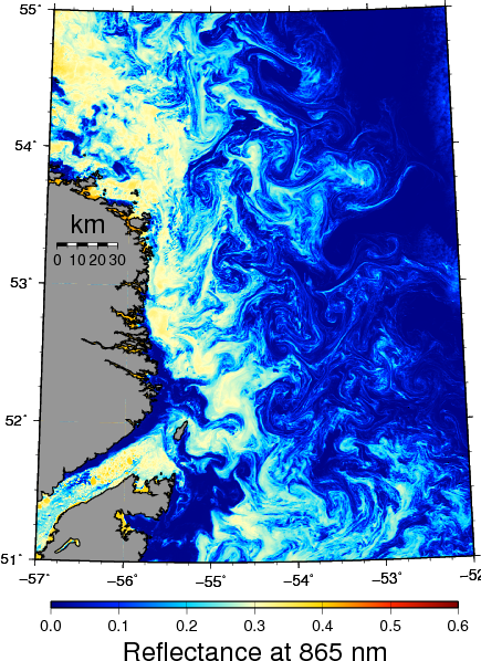 Ice in the Labrador Current as seen by MODIS-Terra on April 6, 2008. Blue colors represent open water while white and yellow colors represent ice of varying concentrations.