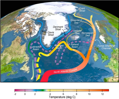 North-Atlantic Drift Current turning into the Norwegian Current that brigs warm Atlantic waters into the Arctic Ocean to the north of Norway and Spitsbergen. [Credits: Ruther Curry of WHOI and Cecilie Mauritzen of Norwegian] Meteorological Institute]