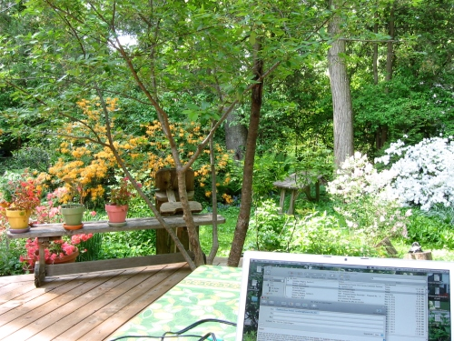 Working at in the garden at home preparing for field work.